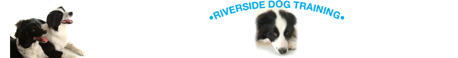 Riverside Dog Training